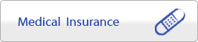 Medical / Dental Insurance